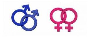 homoseksuellik escinsellik